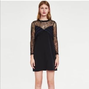NWT ZARA A line dress with lace and ribbed collar